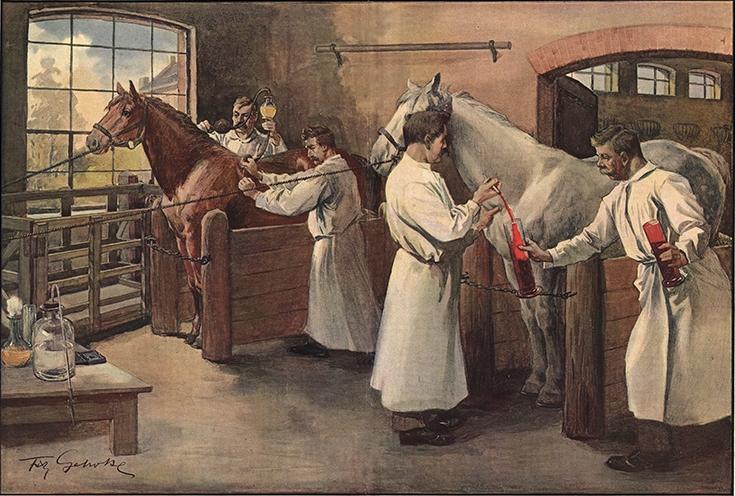 Fritz Gehrke (1855-1916): Die Gewinnung des Diphtherieserums aus Pferdeblut im Behringwerk zu Marburg